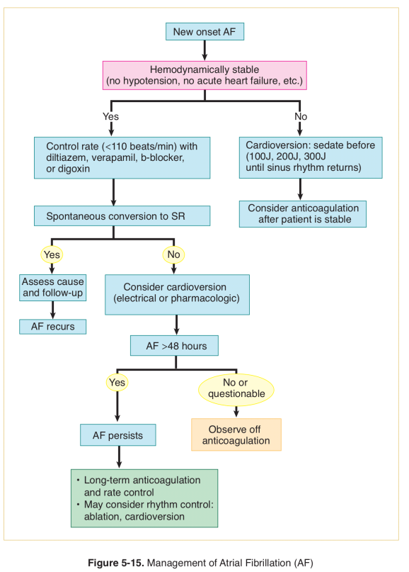arrhythmia-6-e1521844951664.png