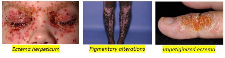 Dermatology 15