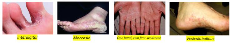 Dermatology 21