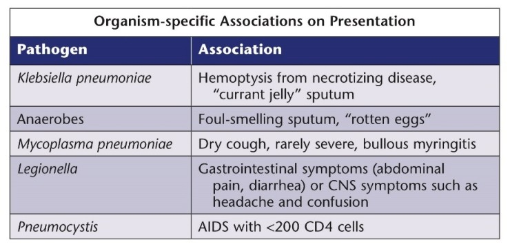 Pneumonia 4