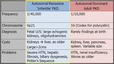 Renal cystic diseases 8