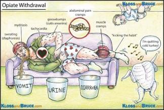 Toxicology 13