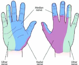 hand inj 2