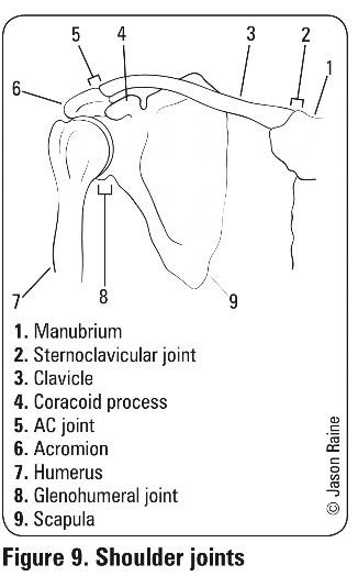 UL fractures 3